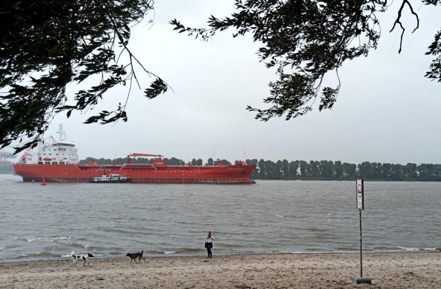 Die Elbe und der Alte Schwede